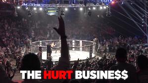 MMA 混合武術:痛打這門生意